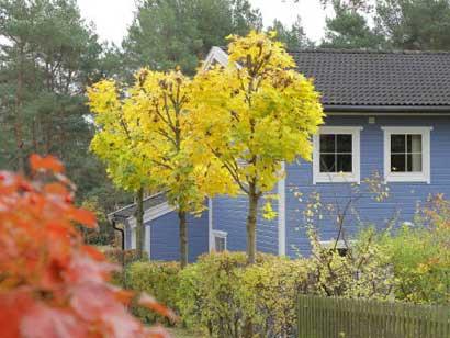 Das ökologische Holzhaus von außen